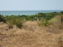 8 - Acheter un terrain au sénégal Terrain-sénégal1